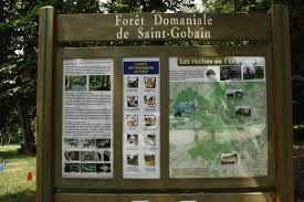 Foret domaniale de Saint-Gobain