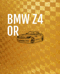 formulakids_BMW_Z4_volant_or-1