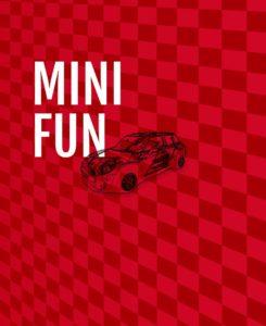 volant-fun-mini